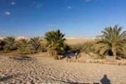 Pharaohs & Deserts Tour
