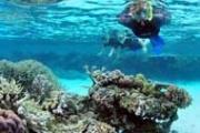 Rescue Diver Course Tour